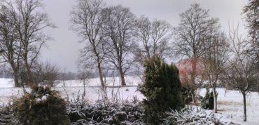 Mechowo zimą